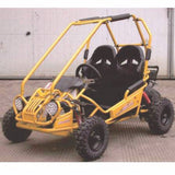 Trailmaster MiniXRX 163cc Automatic Without Reverse Kids GoKart