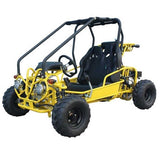 TaoTao GK110 110cc Go Kart with Fully Automatic  W/Reverse Yellow
