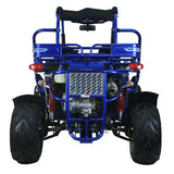 Trailmaster 300XRX With Automatic Transmission w/Reverse 300cc GoKart Blue