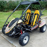 Trailmaster Blazer 200R w/ Automatic Transmission W/Reverse  200cc GoKart. 99% Assembled in the box