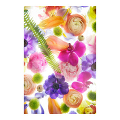 Bright Flower Mix I by Wiff Harmer - Wall Art - Wiff Harmer - Salut Home