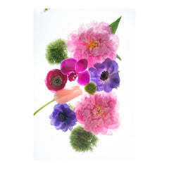 Bright Flower Mix V by Wiff Harmer - Wall Art - Wiff Harmer - Salut Home