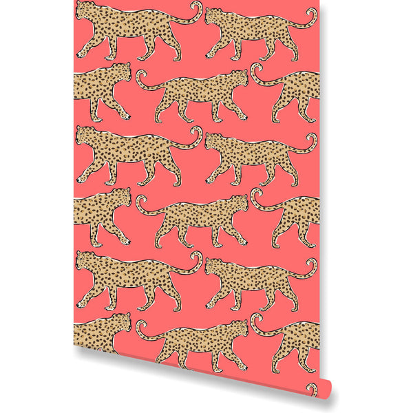 Leopard Coral Wallpaper by Clairebella Studio
