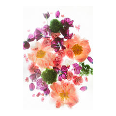 Shades of Pink I Floral Photo by Wiff Harmer - Wall Art - Wiff Harmer - Salut Home