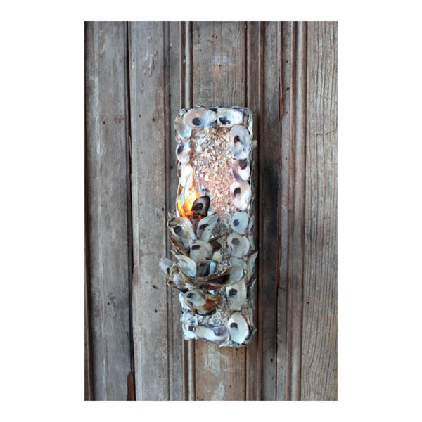 Oyster Sconce by Solaria Lighting
