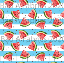 Load image into Gallery viewer, Watermelon Slices (Preorder)