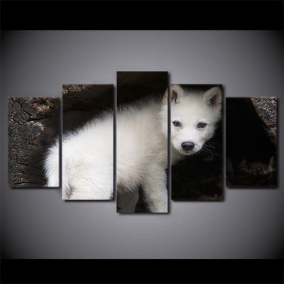 Limited Edition 5 Piece Baby White Wolf  Hiding Canvas