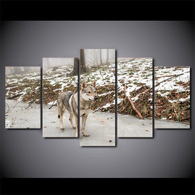 Limited Edition 5 Piece Gray Wolf In The Forest Canvas