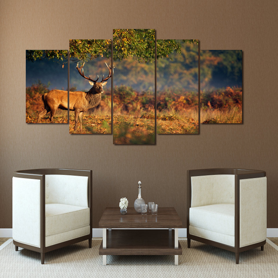 Limited Edition 5 Piece Deer In  An Orange Sunset Canvas