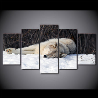 Limited Edition 5 Piece Sleeping Wolf In The Snow Canvas