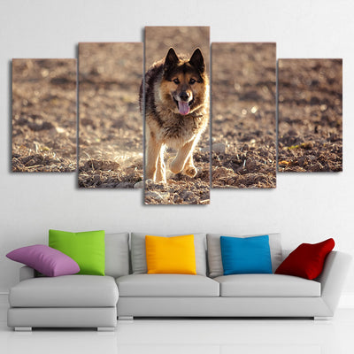 Limited Edition 5 Piece Wild Wolf In The Wilderness Canvas