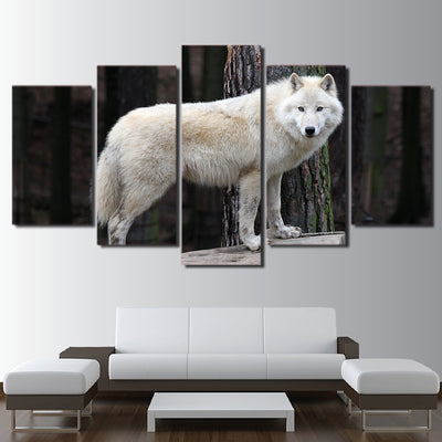 Limited Edition 5 Piece Staring White Forest Wolf Canvas