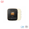 Shanling Q1  Portable Music Player with aptX Bluetooth