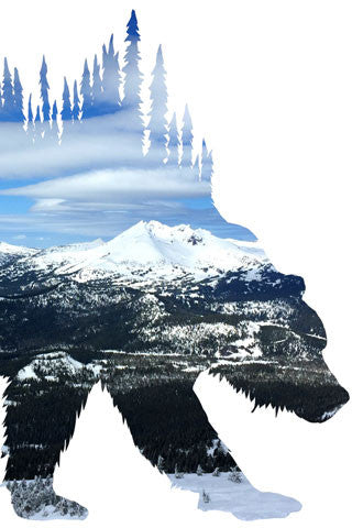 BEAR of BACHELOR. Mt Bachelor Digital photo art design.  Taken on a ski trip from the Pine Marten Lodge at Mt Bachelor, the scenery includes Broken Top, and the Sisters Range of mountains in Central Oregon. Great skiing on a beautiful day one of our great adventures.  Bear of Bachelor Photo Art Print by Steve and Dalton Lovitt of SQUATCH Industries.  Bear print available White on Maroon Graphic Tee.  Soft Gloss prints, available in sizes 5x7 and 11x14.  Shipped on white backer board in clear bag.