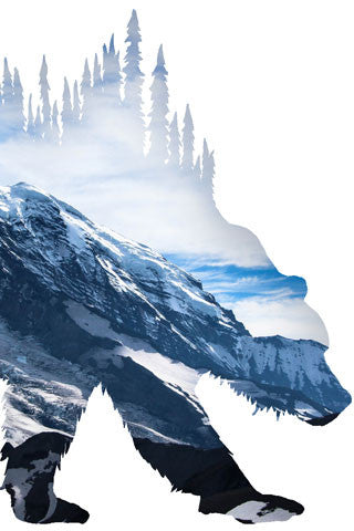 BEAR of MT RAINIER. Digital photo art design.  Hiking from Sunrise you hike up to the First, Second and Third Burroughs where you look over at the Emmons and Winthrop Glacier and of course, this photo of beautiful Mt Rainier.  A great hike and a great adventure.