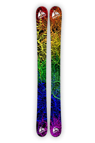 SPRIAL FERN Ski Wraps original digital photo graphic print.