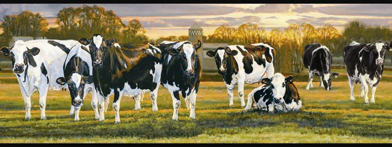 Country Dairy Cow Wallpaper Border FFR65382B