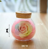 七彩玫瑰【许愿瓶】Rose Light Wishing Bottle