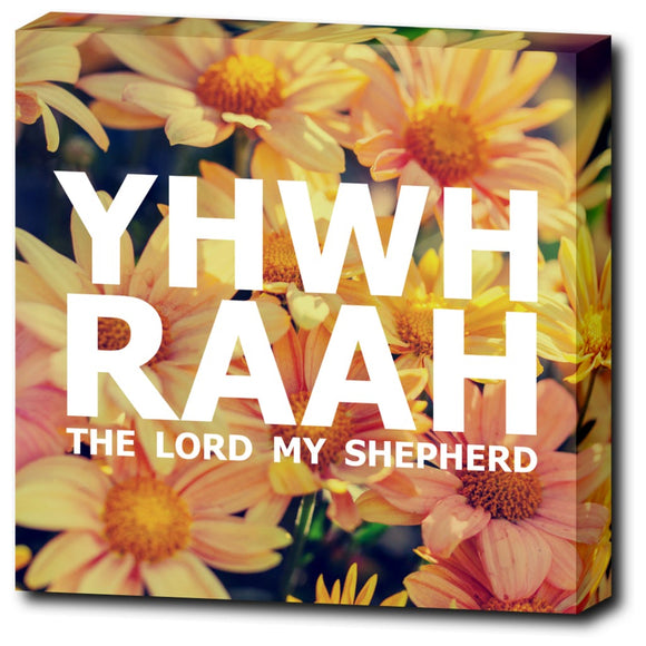 YHWH RAAH - The Lord My Shepherd - 12