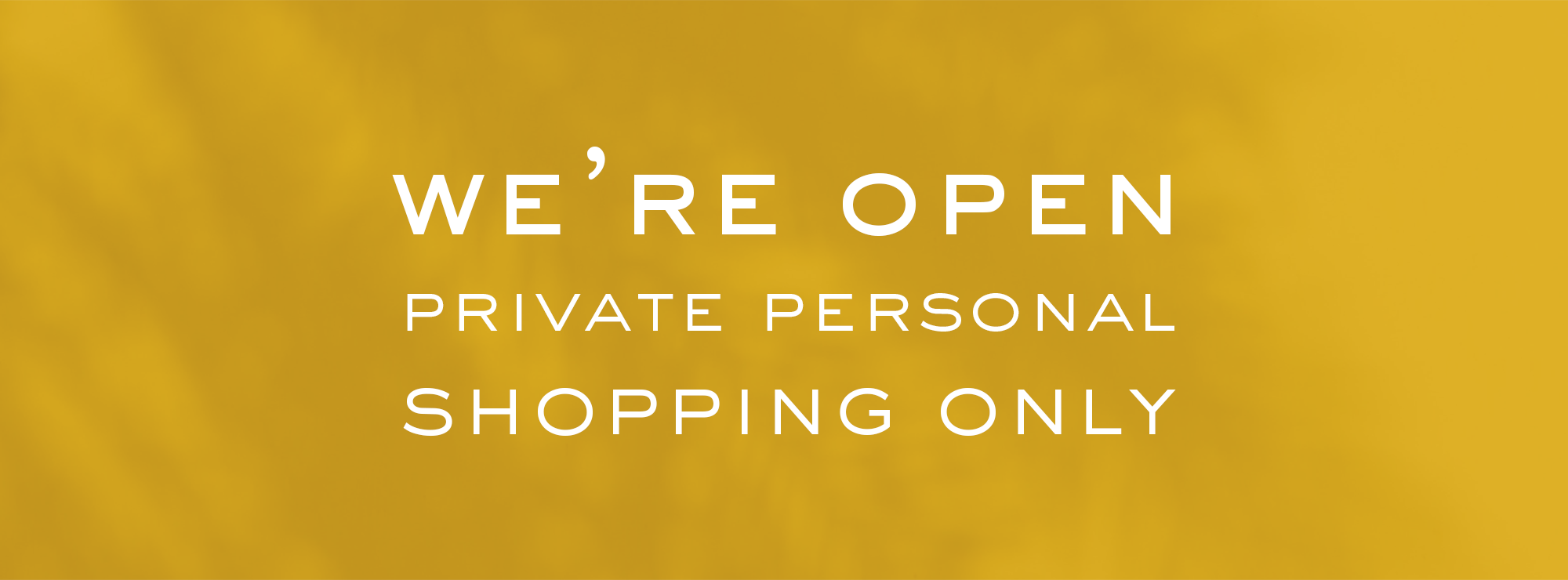 Private Personal Shopping Only