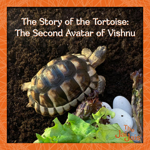 The Story of the Tortoise: The Second Avatar of Vishnu.