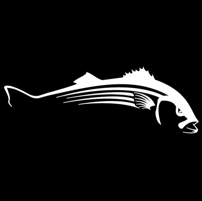 Steelfin-Striper Decal-White - OffshoreApparel.com