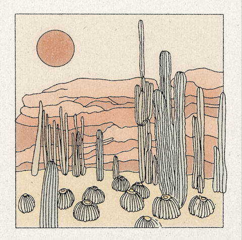 Prints by Real Fun, Wow! feature landscapes such as this desert scene in pale oranges and pinks showing cactus and mountains
