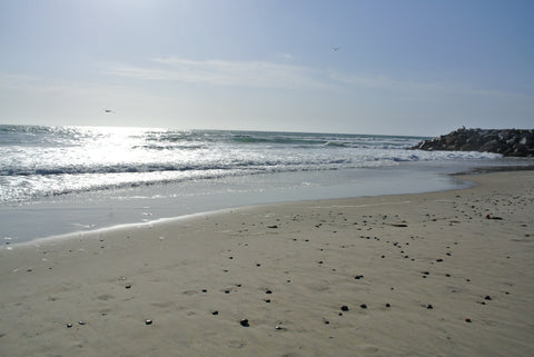 Ponto State Beach, California.