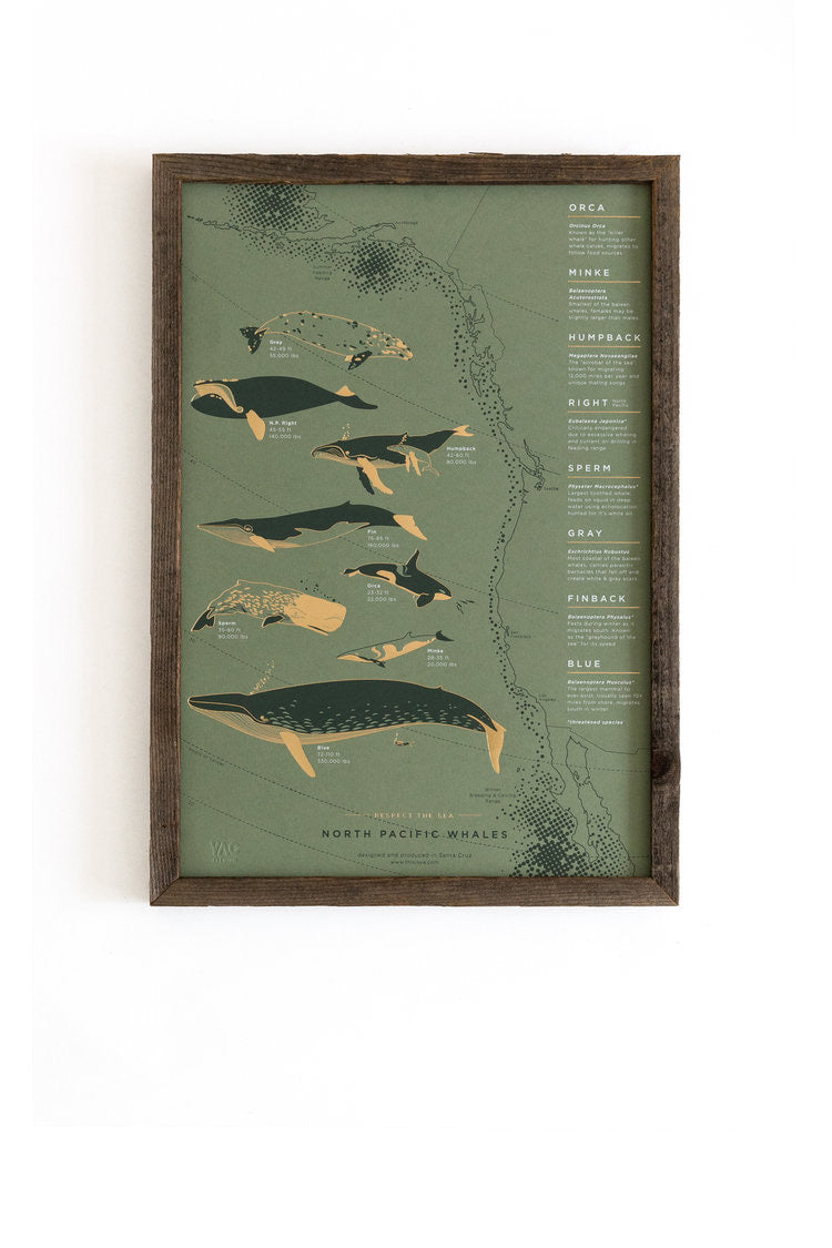 California whale migration foil pressed art