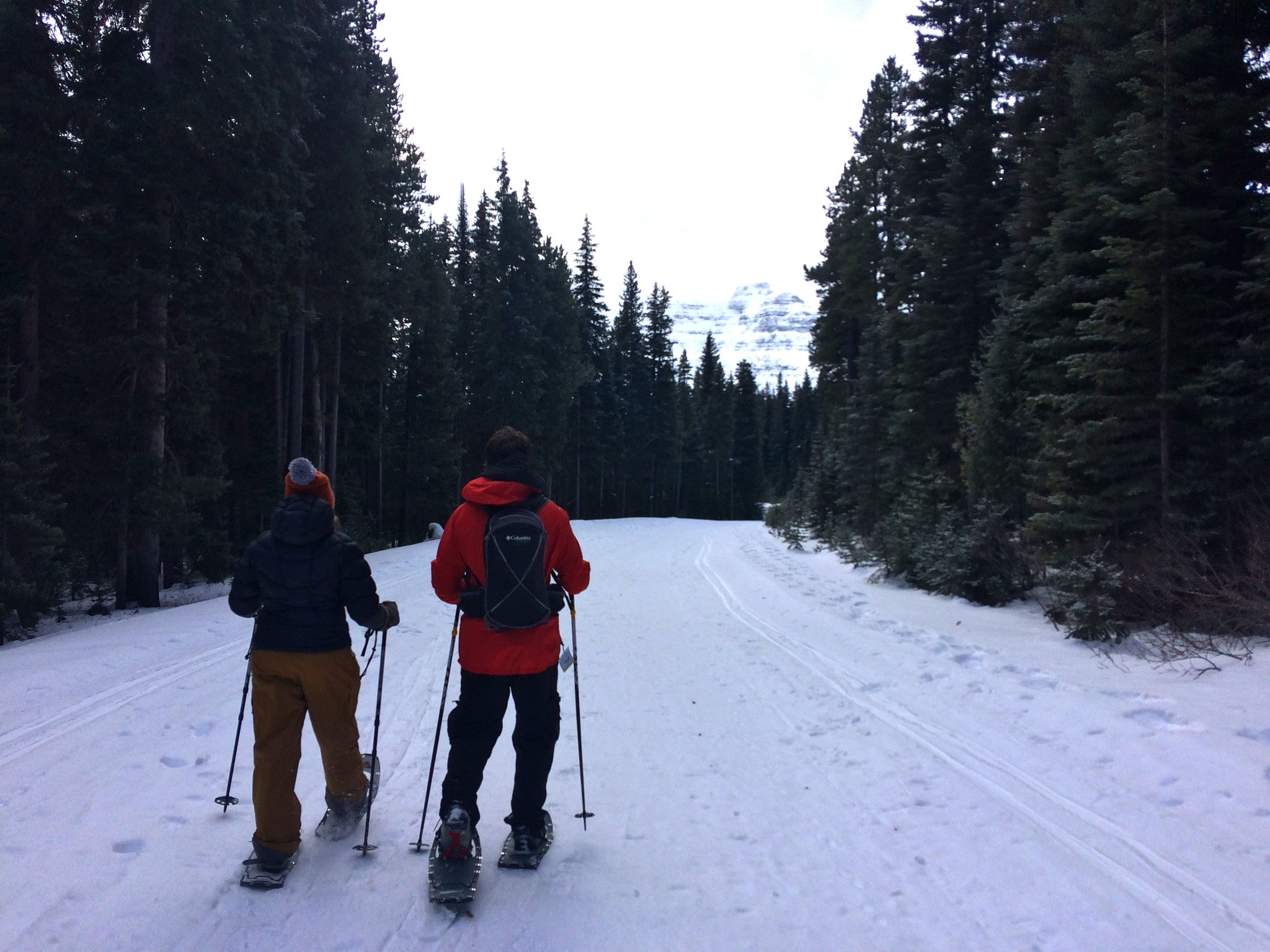 Winter Trails In Waterton