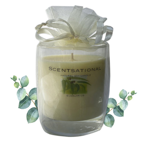 Scented Soy Candles EUCALYPTUS (11 oz) eliminates smoke, household and pet odors.