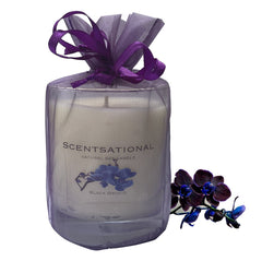 Scented Soy Candles BLACK ORCHID (11 oz) eliminates smoke, household and pet odors.