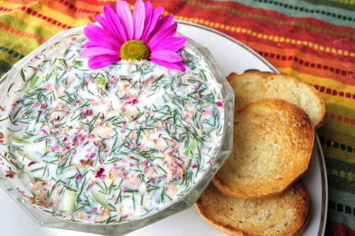 Abdo Khiar (Chilled Yogurt Soup) with Baked Bread
