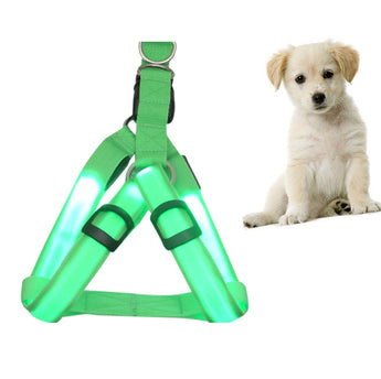 LED Dog Harness (Many Sizes Available)