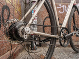 Veer Split Belt Pro Rohloff Rear Sprocket on Sage Titanium Gravel Frame