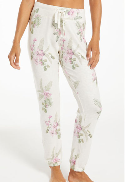 Z Supply - Ava Floral Jogger Bone