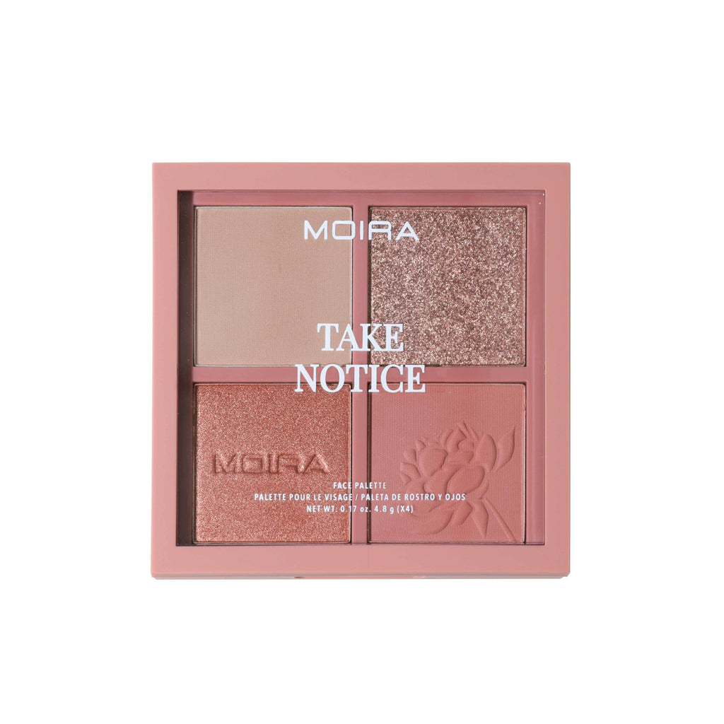 TAKE NOTICE FACE PALETTE