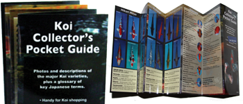 Koi Collector Pocket Guide