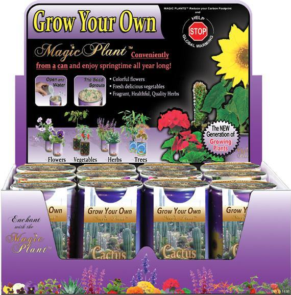 Grow Your Own Magic Plant Cactus - Desert Gatherings