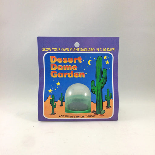 Saguaro Dome Garden - Desert Gatherings