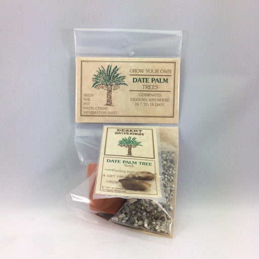 Date Palm Kit - Desert Gatherings