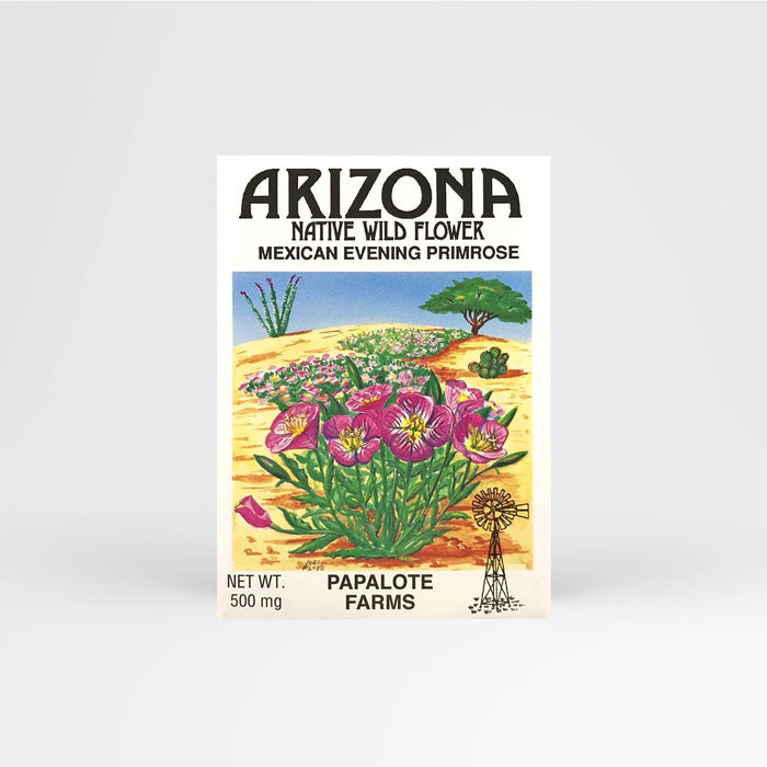 Arizona Mexican Evening Primrose Seed Packet - Desert Gatherings