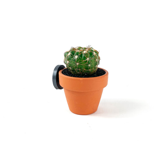 Plain Pot Cactus Magnet - Desert Gatherings