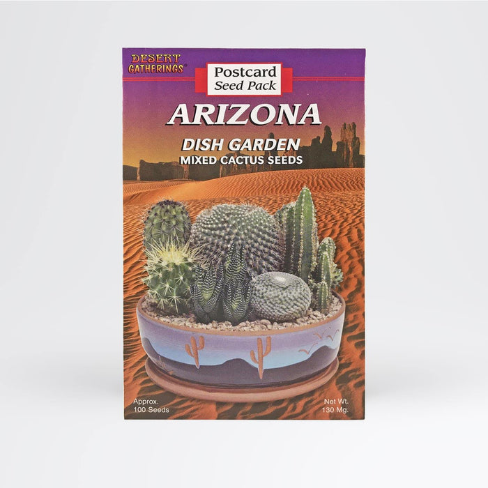 Mixed Cactus Dish Garden Postcard - Desert Gatherings