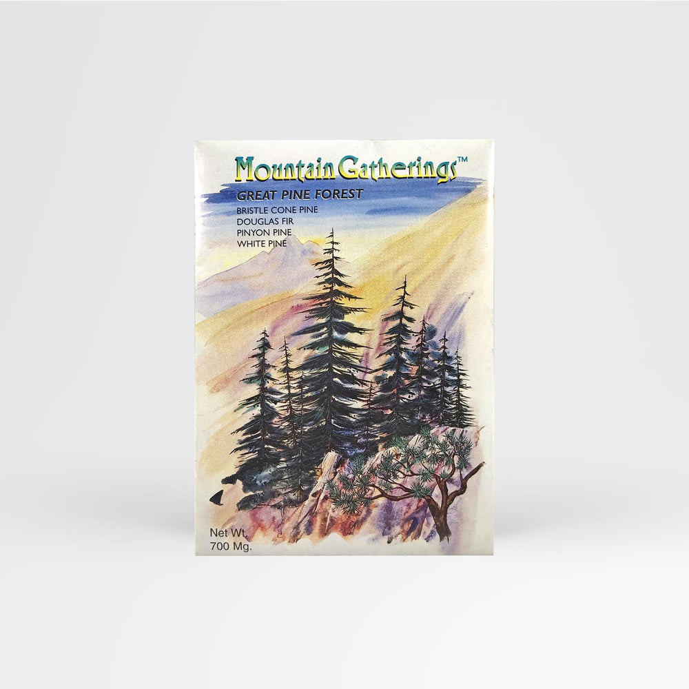 Pine Tree Forest Seed Packet - Desert Gatherings