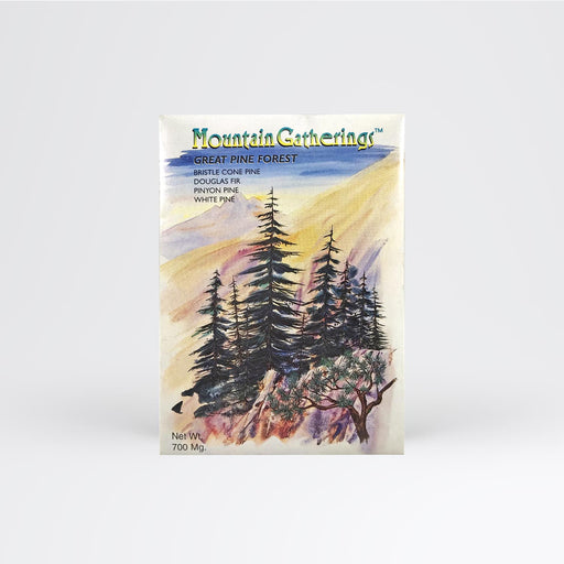 Pine Tree Forest Seed Packet