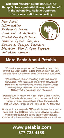 Pet Food Industry features Petabis Organics best organic cbd oil for dogs
