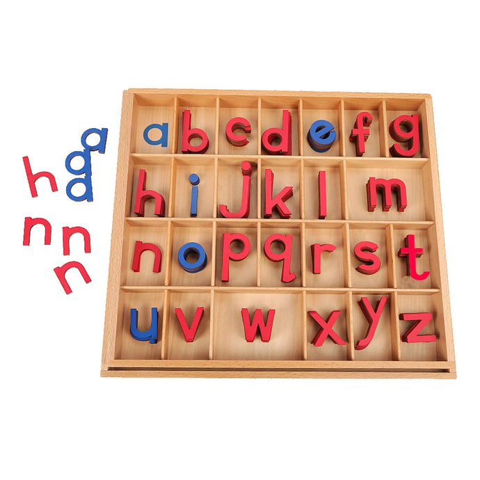 Montessori Moveable Alphabet for Mrs. Larsen