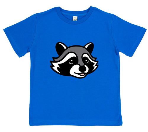 boys raccoon t-shirt blue