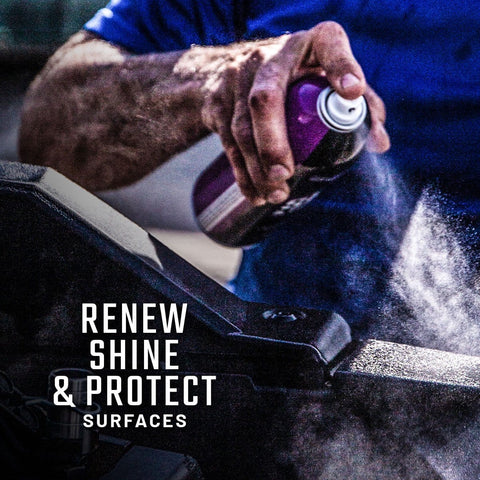 Shine & Protectant 3-Pack
